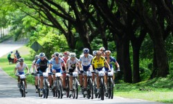 PHOTO GALLERY LIMBC 2012 – STAGE 3