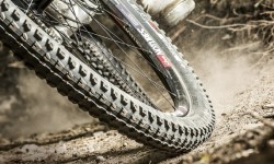 LIMBC MTB 101 : MOUNTAIN BIKE TYRE